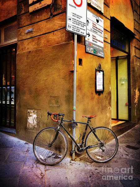 Photograph - O'val Bicycle by Craig J Satterlee