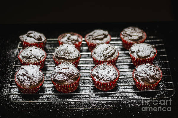 Icing Sugar Wall Art - Photograph - Oven Fresh Cupcakes by Jorgo Photography - Wall Art Gallery