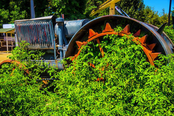 Wall Art - Photograph - Over Grown Tractor by Garry Gay