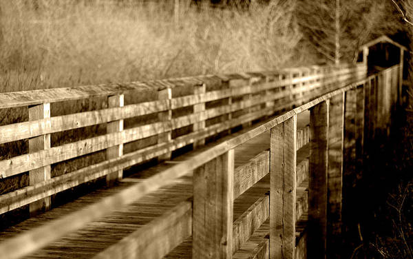 Photograph - Over The Bridge - Sepia by Marilyn Wilson