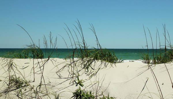 Photograph - Over The Dunes by Cynthia Guinn