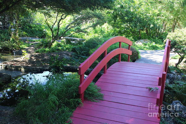 Wall Art - Photograph - Over The Japanese Garden Bridge by Carol Groenen