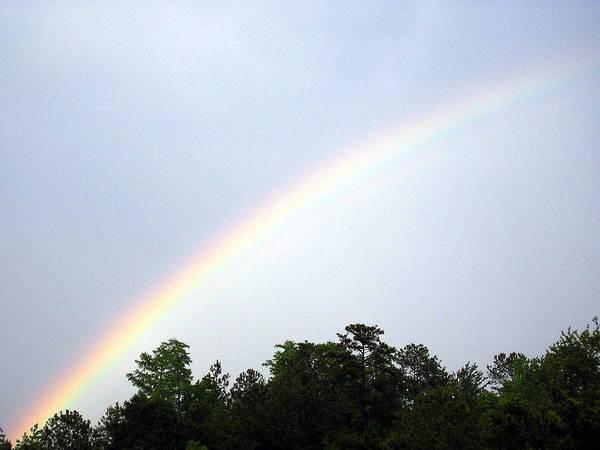 Over The Rainbow Art Print by Tina Antoniades