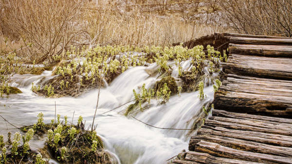 Photograph - Over The River by Heather Applegate