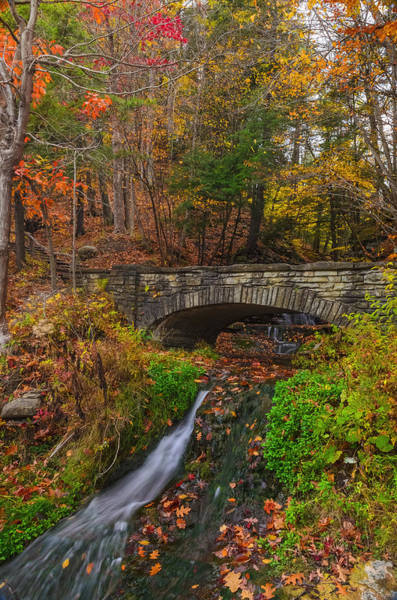 Expanse Photograph - Over The Stream by Mark Papke