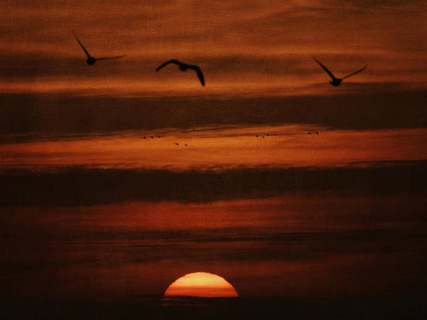 Photograph - Over The Sun by Charles McKelroy