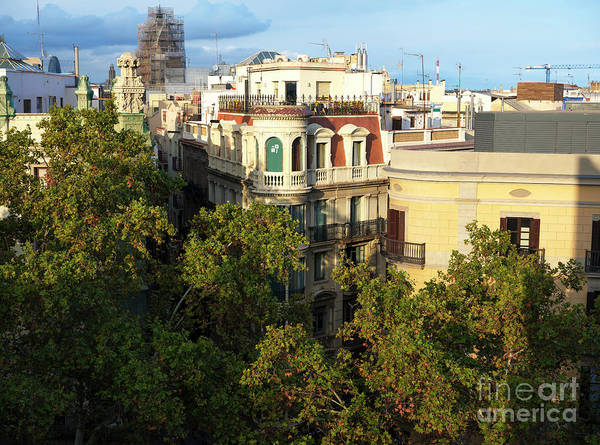 Wall Art - Photograph - Over The Trees On La Rambla In Barcelona by John Rizzuto