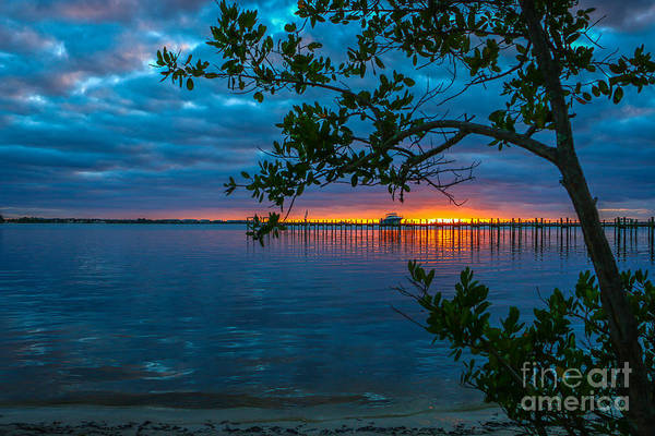 Art Print featuring the photograph Overcast Sunrise by Tom Claud