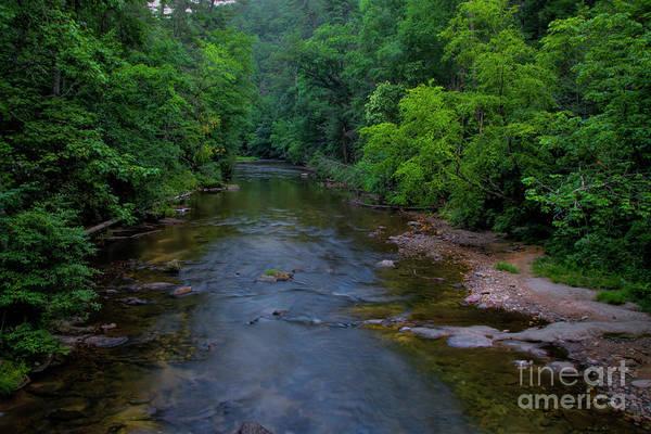 Photograph - Overflow Creek by Barbara Bowen