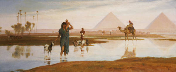 Wall Art - Painting - Overflow Of The Nile by Frederick Goodall