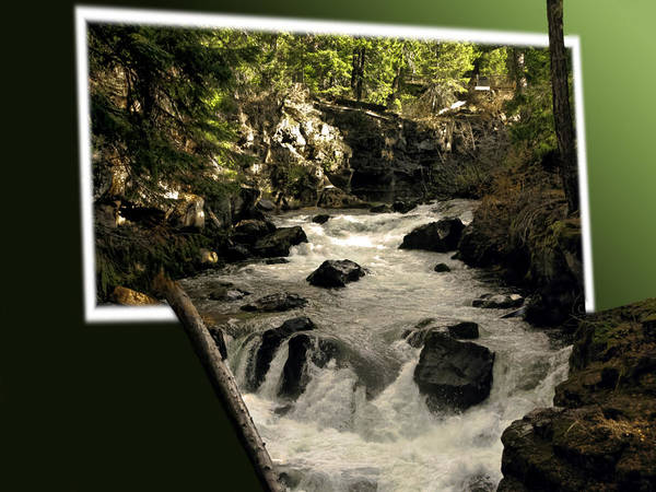Rogue River Wall Art - Photograph - Overflowing by Diane Schuster