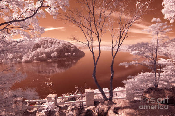 Wall Art - Photograph - Overlook In Ir by Paul W Faust -  Impressions of Light