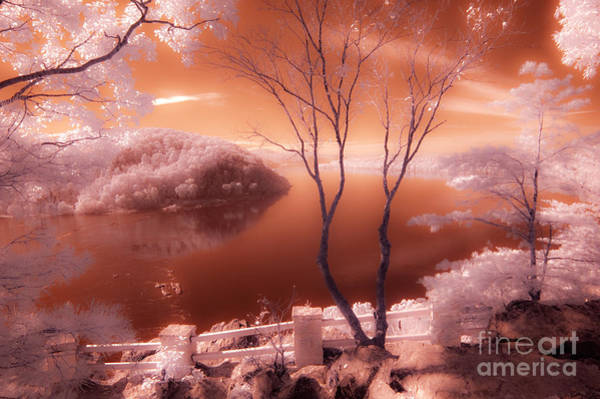 Wall Art - Photograph - Overlook - Infrared Se by Paul W Faust -  Impressions of Light