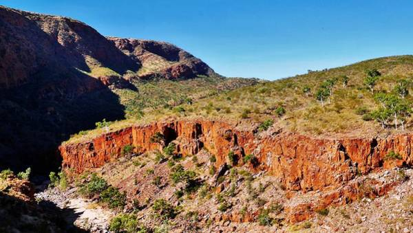 Photograph - Overlooking Ormiston Gorge by Lexa Harpell