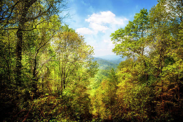 Photograph - Overlooking The Blue Ridge Mountains by Debra and Dave Vanderlaan