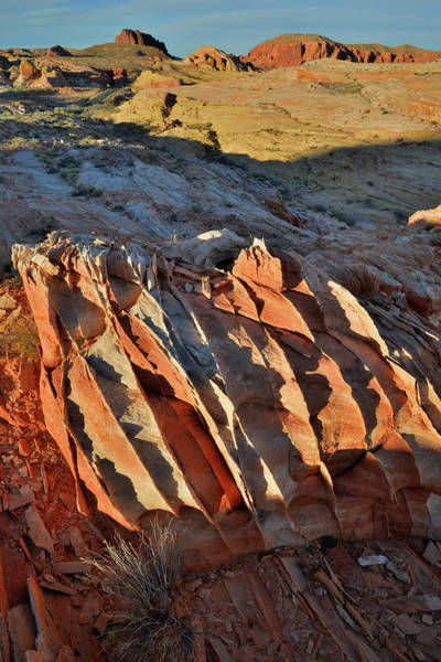 Photograph - Overlooking Wash 3 At Sunset In Valley Of Fire by Ray Mathis