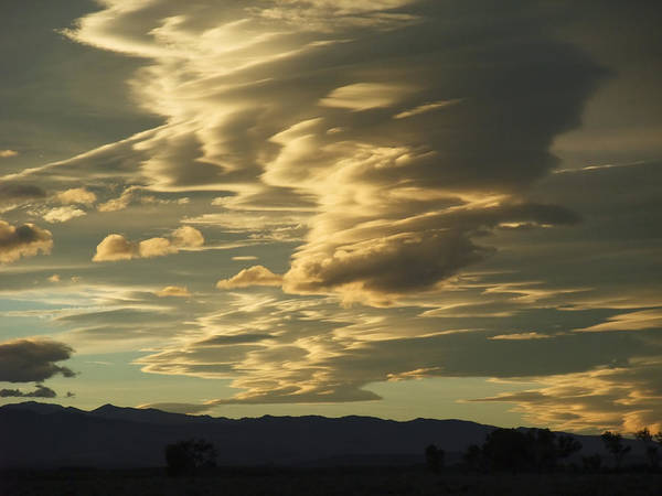 Wall Art - Photograph - Owens Valley Evening by Alpha Pup