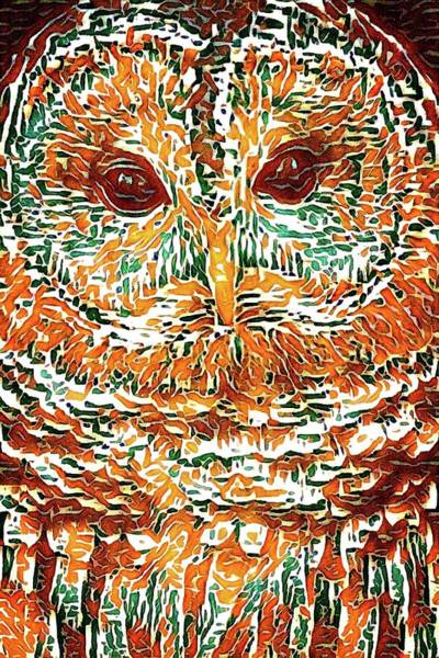 Photograph - Owl Abstract by Alice Gipson