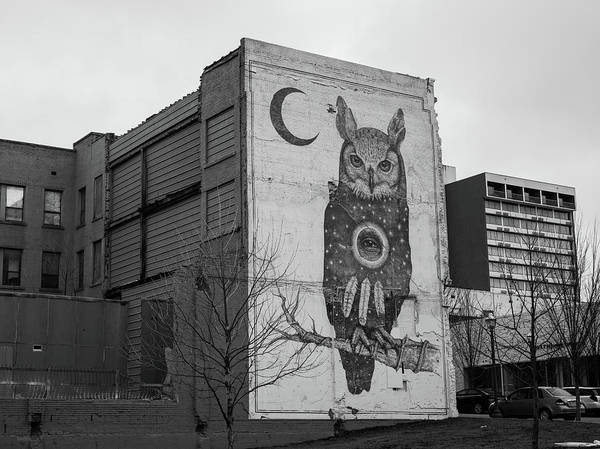 Fayetteville Photograph - Owl And Crescent Moon Mural - Black And White - Downtown Fayetteville Arkansas  by Gregory Ballos