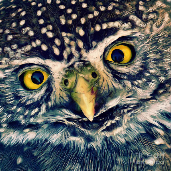 Wall Art - Digital Art - Owl by Angela Doelling AD DESIGN Photo and PhotoArt