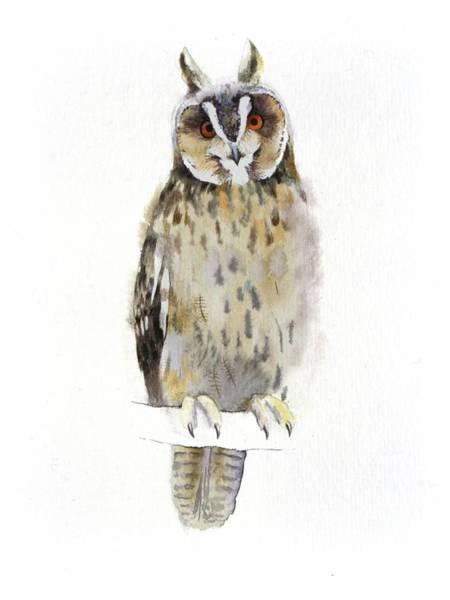 Painting - Owl by Attila Meszlenyi