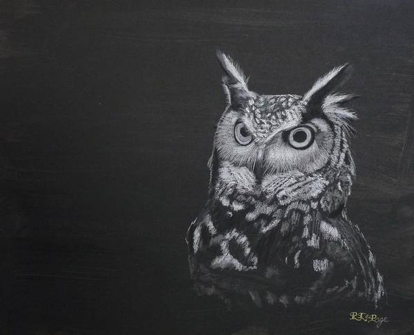 Pastel - Owl Black And White by Richard Le Page