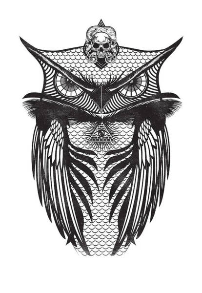 Digital Art - Owl Illustration by IamLoudness Studio