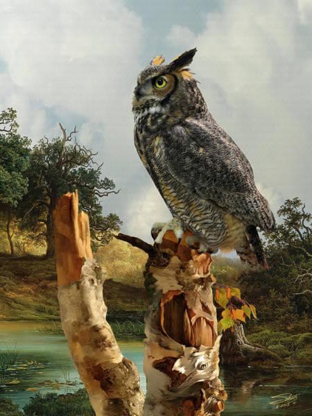 Digital Art - Owl In Birch Tree by M Spadecaller
