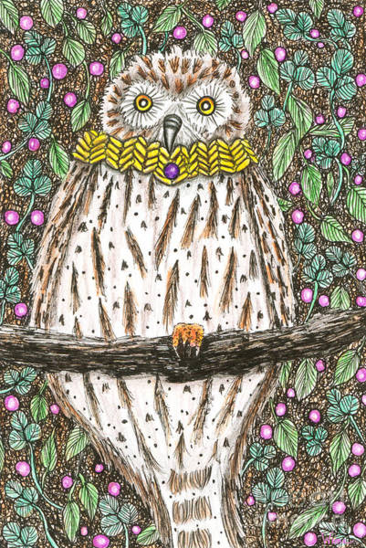 Drawing - Owl Martin In A Cowl by Lise Winne