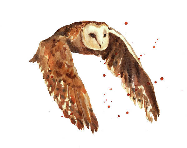 Wall Art - Painting - Owl Print by Alison Fennell