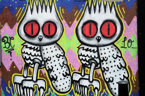Wall Art - Photograph - Owls Graffiti  by Liz Pinchen