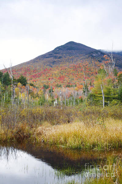 Photograph - Owls Head - White Mountains New Hampshire  by Erin Paul Donovan