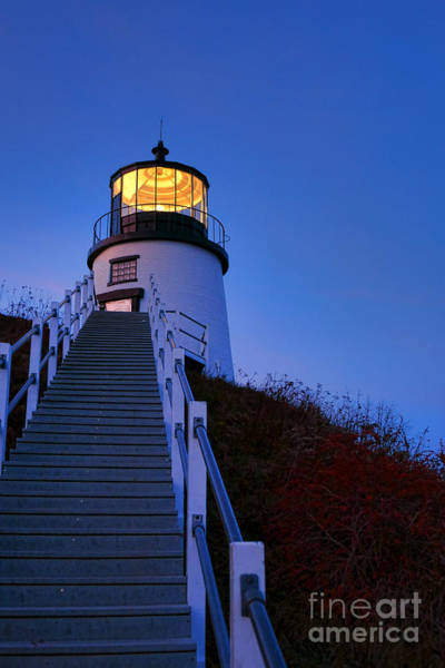 Wall Art - Photograph - Owls Head Light At Dusk by Olivier Le Queinec