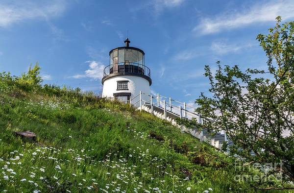 Photograph - Owls Head Light by Karin Pinkham