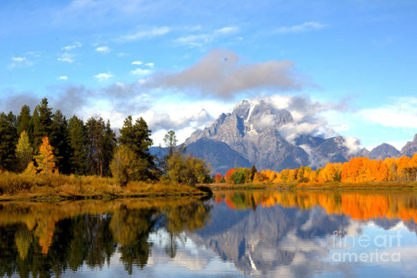 Photograph - Mt Moran At Oxbow Bend by Cynthia Mask