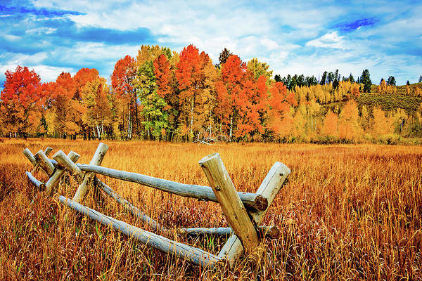 Photograph - Oxbow Bend Fall Color by Norman Hall