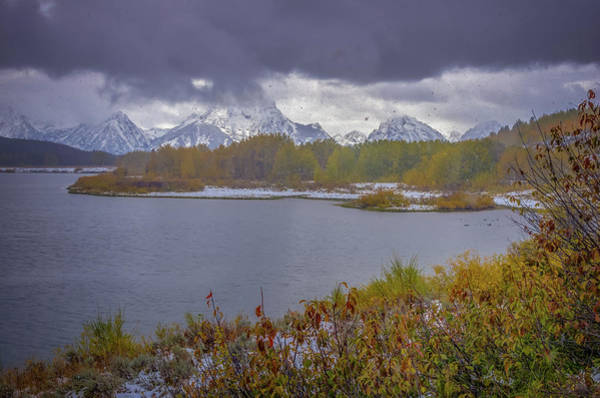 Photograph - Oxbow Bend Fall Snowfall by Scott McGuire