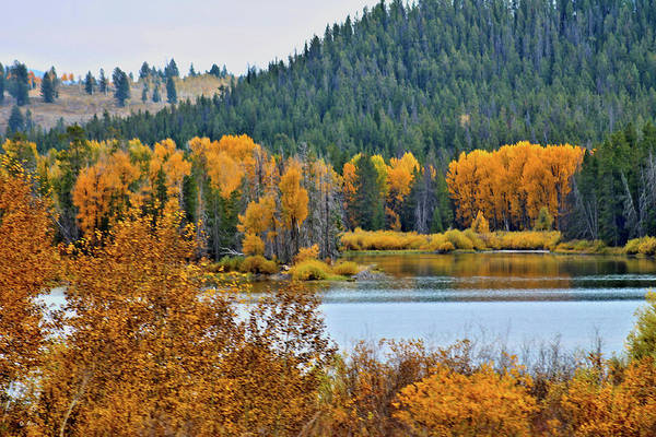 Fall Scenery Mixed Media - Oxbow Bend by G Berry