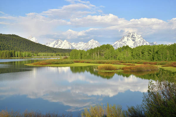 Photograph - Oxbow Bend Reflection In Grand Teton National Park by Ray Mathis