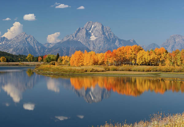 Photograph - Oxbow Bend Reflection by Wesley Aston