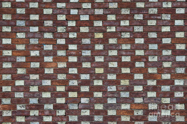 Wall Art - Photograph - Oxford Brick Wall by Tim Gainey