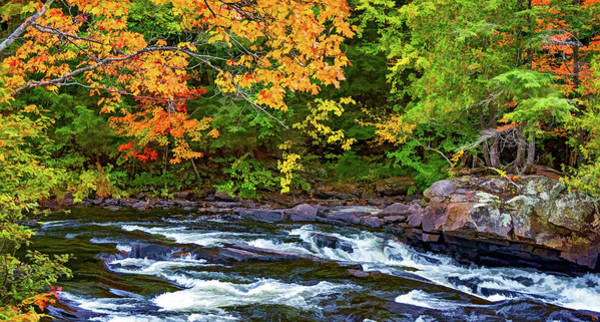 Algonquin Park Digital Art - Oxtongue Rapids 4 - Paint by Steve Harrington