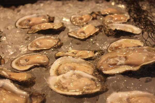 Oyster Bar Wall Art - Photograph - Oysters by Lauri Novak