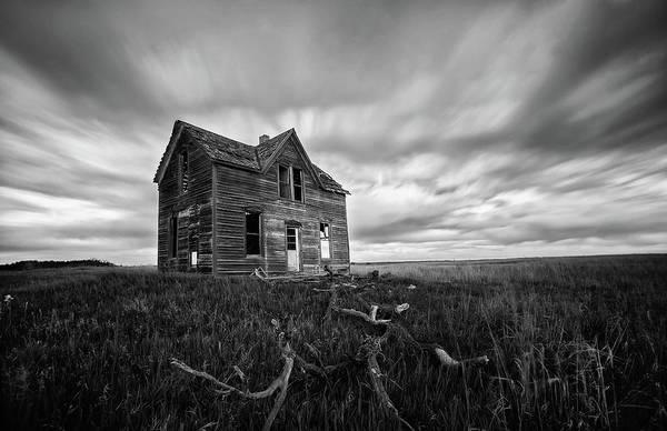 Photograph - Oz by Eilish Palmer