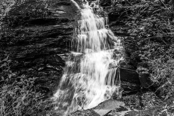 Photograph - Ozone Falls - 8889 by G L Sarti