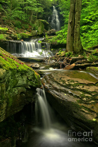 Triple Falls Photograph - Ozone Falls Through The Forest by Adam Jewell