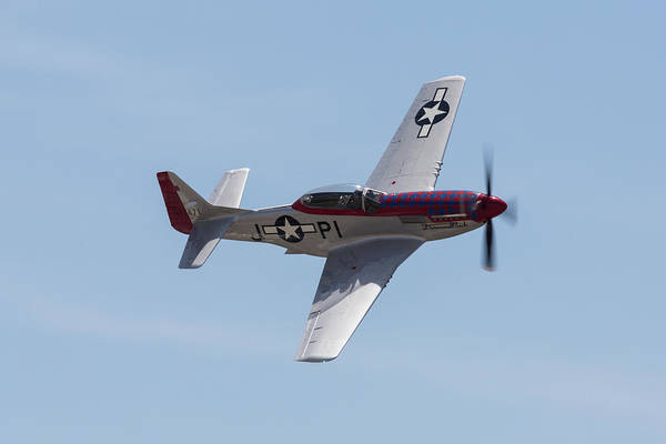 Photograph - P-51 Diamond Back by John Daly