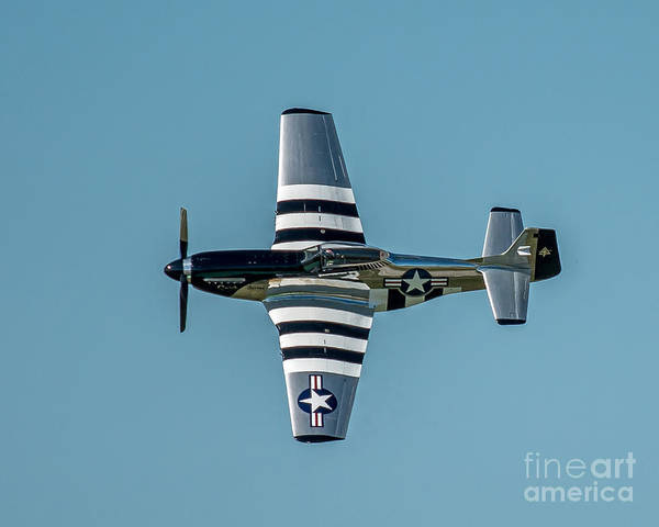 Wall Art - Photograph - P-51 Flying by Stephen Whalen