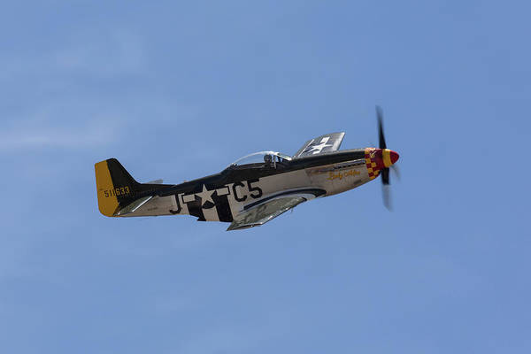 Photograph - P-51 Lady Alice by John Daly