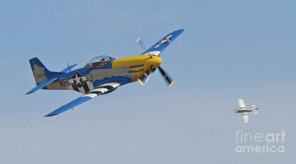 Photograph - P-51 Mustang Fighters  by Kevin McCarthy